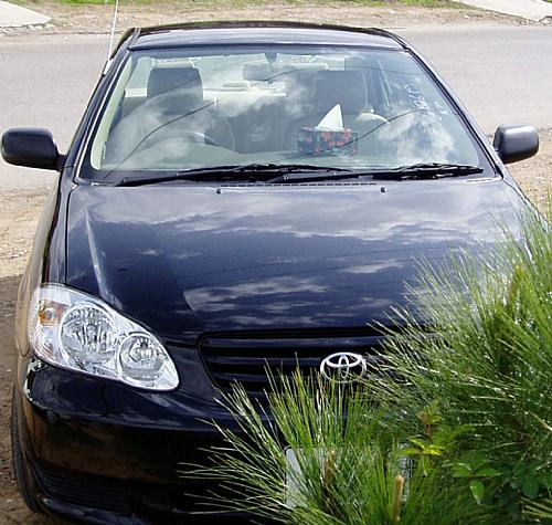 Toyota Corolla - 2005 autophile Image-1