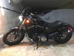 Harley Davidson Iron 883 2012 for Sale in Karachi