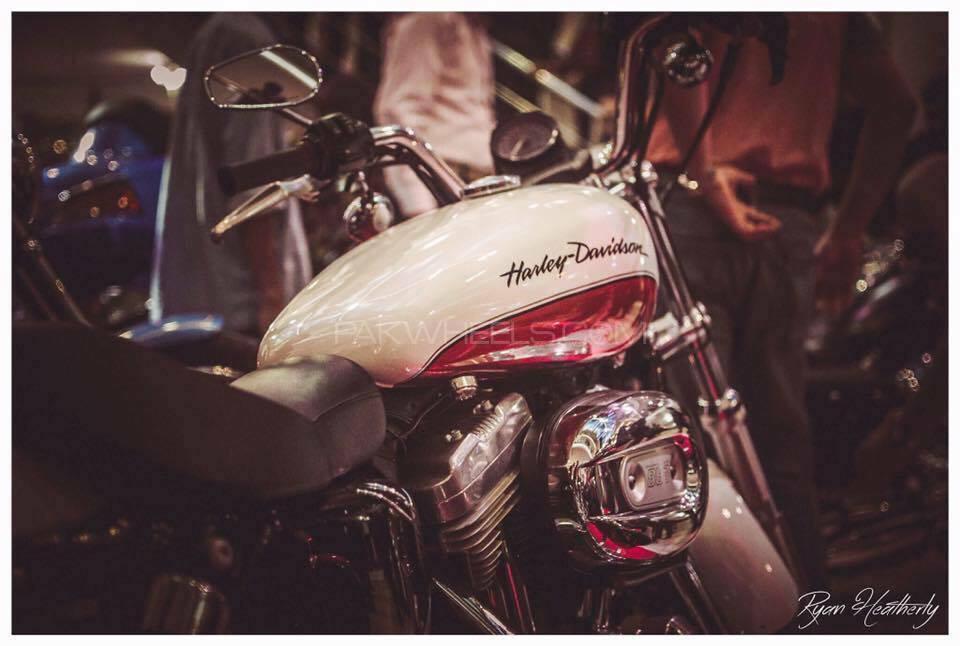 Harley Davidson 883 Low 2011 Image-1