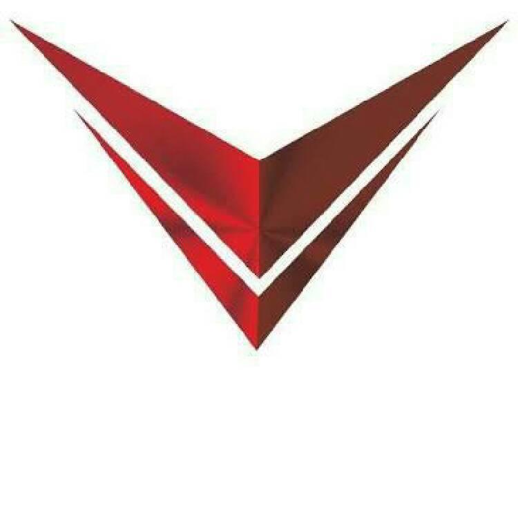 Voltron Motors
